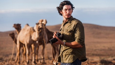 Adam Driver in Tracks - a must-see Aussie film also starring Mia Wasikowska (Copyright The Weinstein Company 2014)